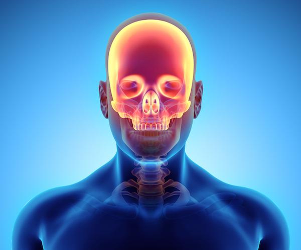 Anterior Skull Base